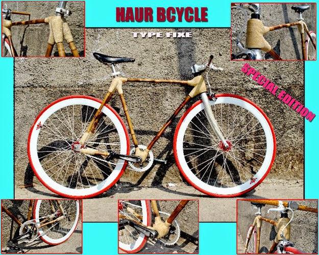 sepeda bambu aur 3