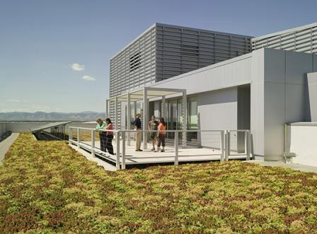 Green Roof di Perkotaan
