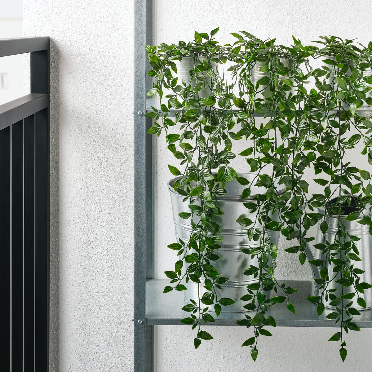 Warnai sudut ruang hobi favoritmu dengan tanaman gantung